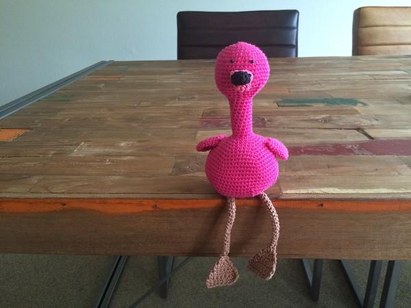 flamingo haken 8