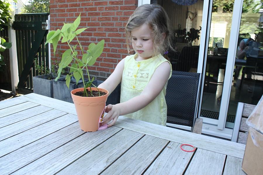 my-fairy-garden-flowerpot-14