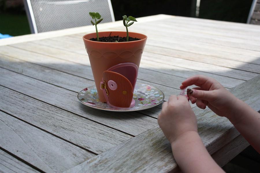 my-fairy-garden-flowerpot-4