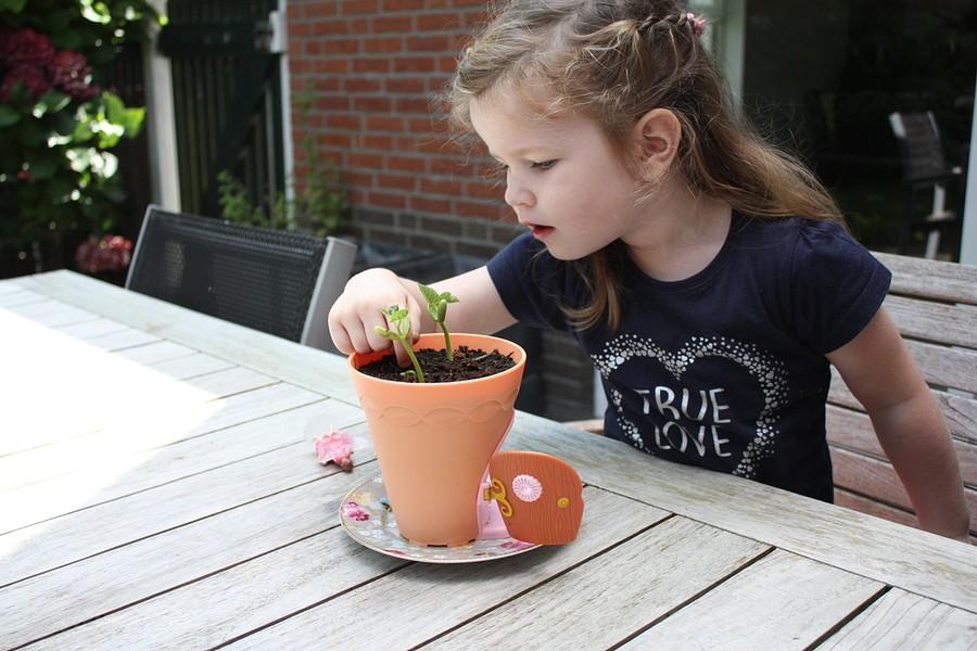 my-fairy-garden-flowerpot-9