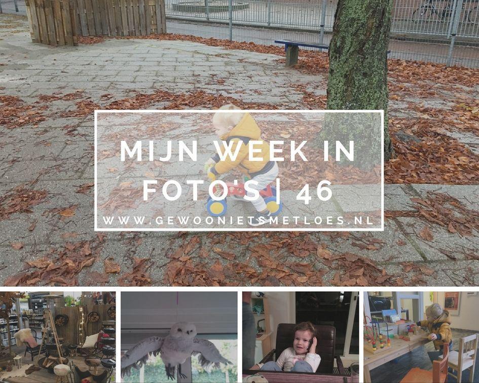 week in foto's | 46